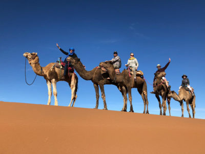 Tourists riding camels in the sand dunes