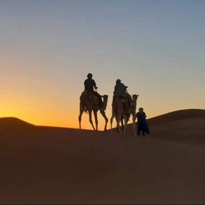Camels riding in the dusk light on the Erg Chebbi Dunes
